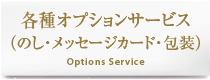 各種オプションサービス